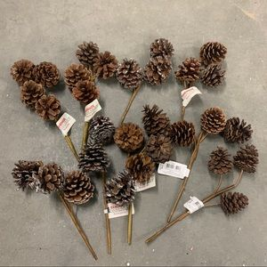 ❗️3 FOR $20❗️9-Pinecone Picks